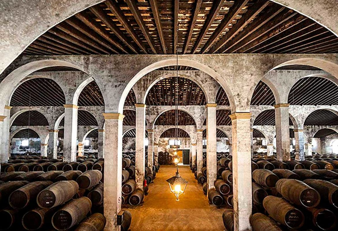 Sherry wines tour in 5 days with Paladar y Tomar