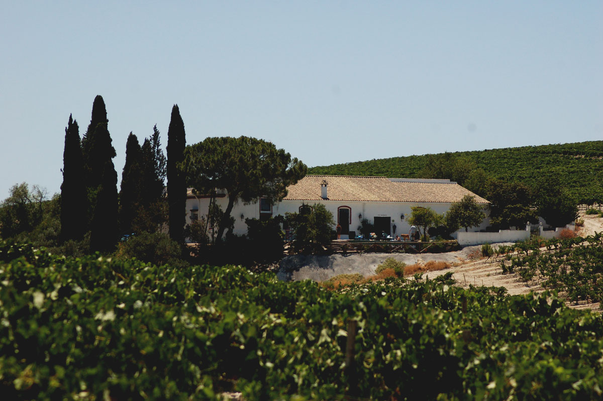Sherry vineyards houses in Jerez, Andalusia