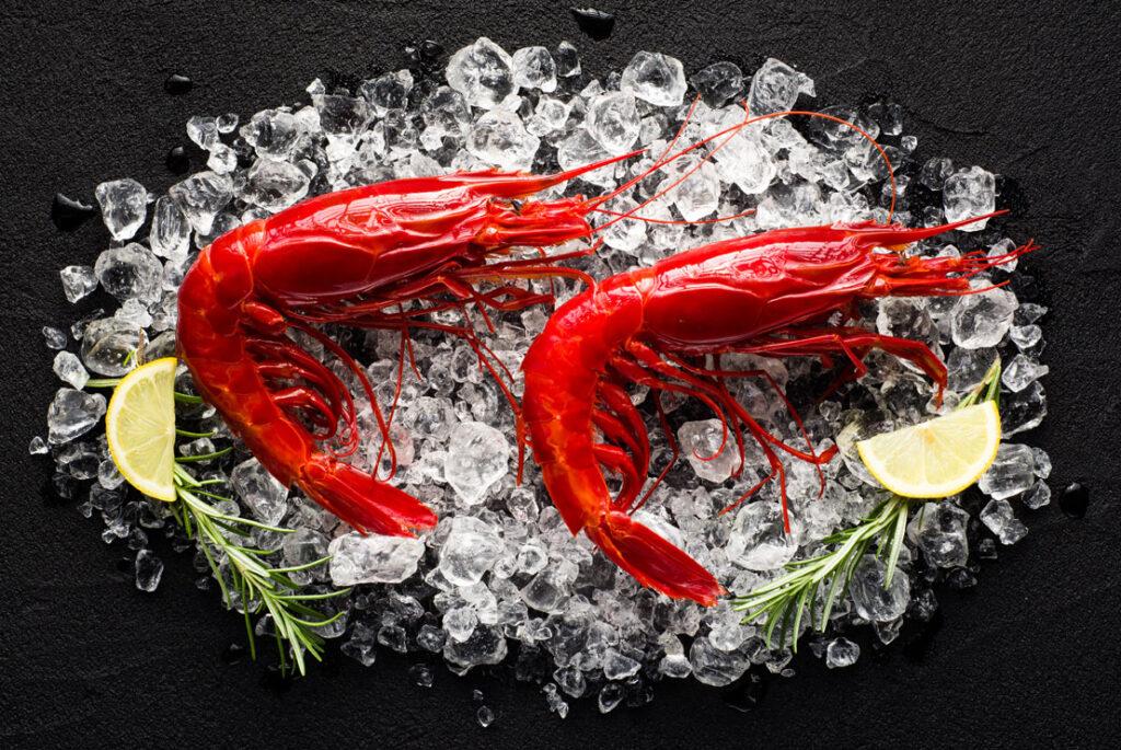Fresh seafood in Spain, Paladar y Tomar