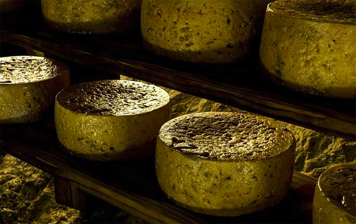 Asturias offers the widest selection of cheeses in Europe, explore it with Paladar y Tomar
