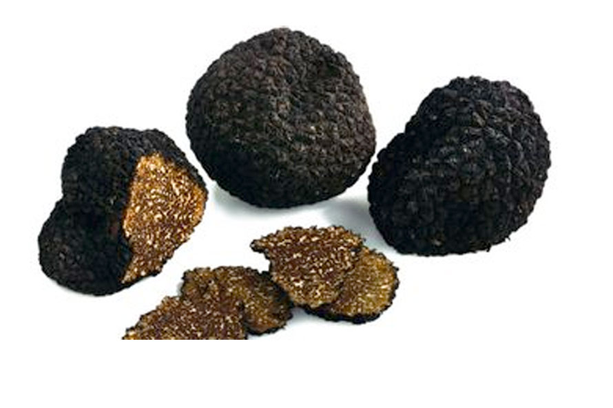 Spanish cuisine and black truffle