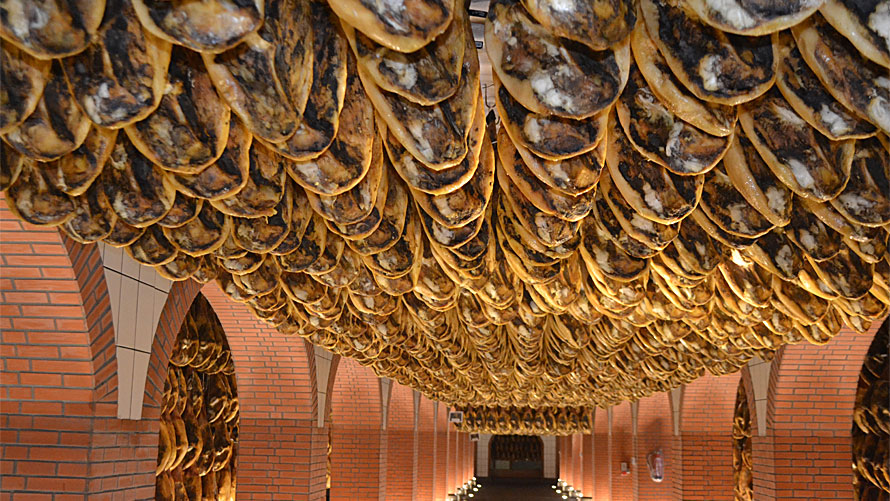 Paladar y Tomar organized private tours and tastings of jamon iberico de bellota