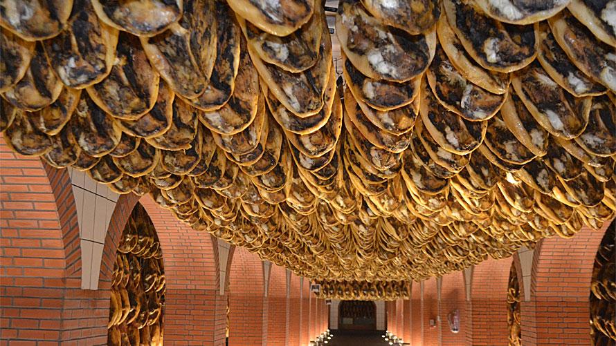 Paladar y Tomar organized private tours and tastings of jamon iberico de bellota