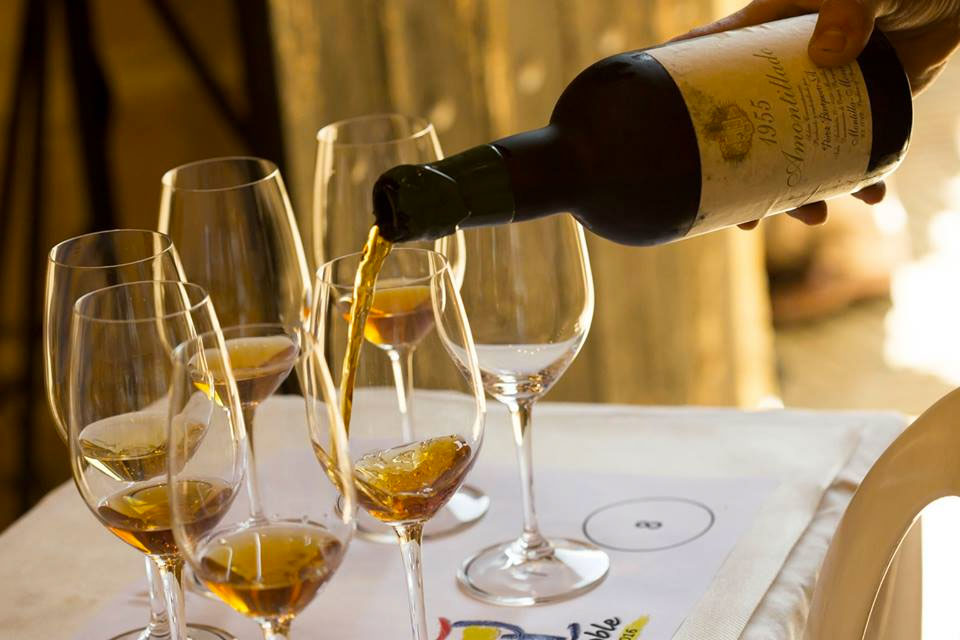Vinoble, the great fortified wines event, Jerez de la Frontera, Paladar y Tomar