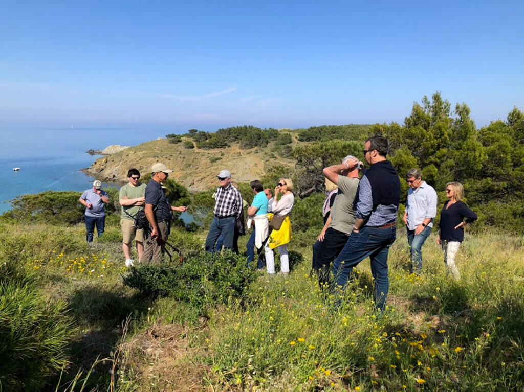 Wild foraging in the Mediterranean with CÚRATE Trips