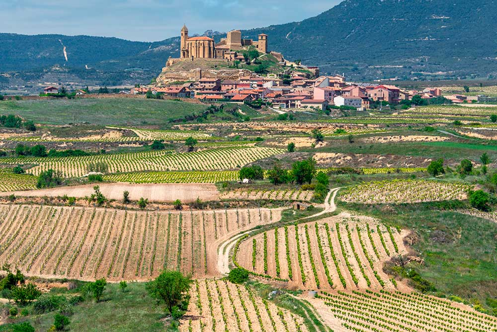 Rioja day trip, from Bilbao or San Sebastian, Paladar y Tomar