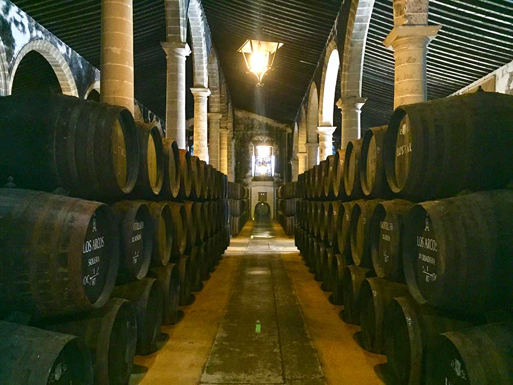 Exclusive sherry wineries tour in Jerez with Paladar y Tomar