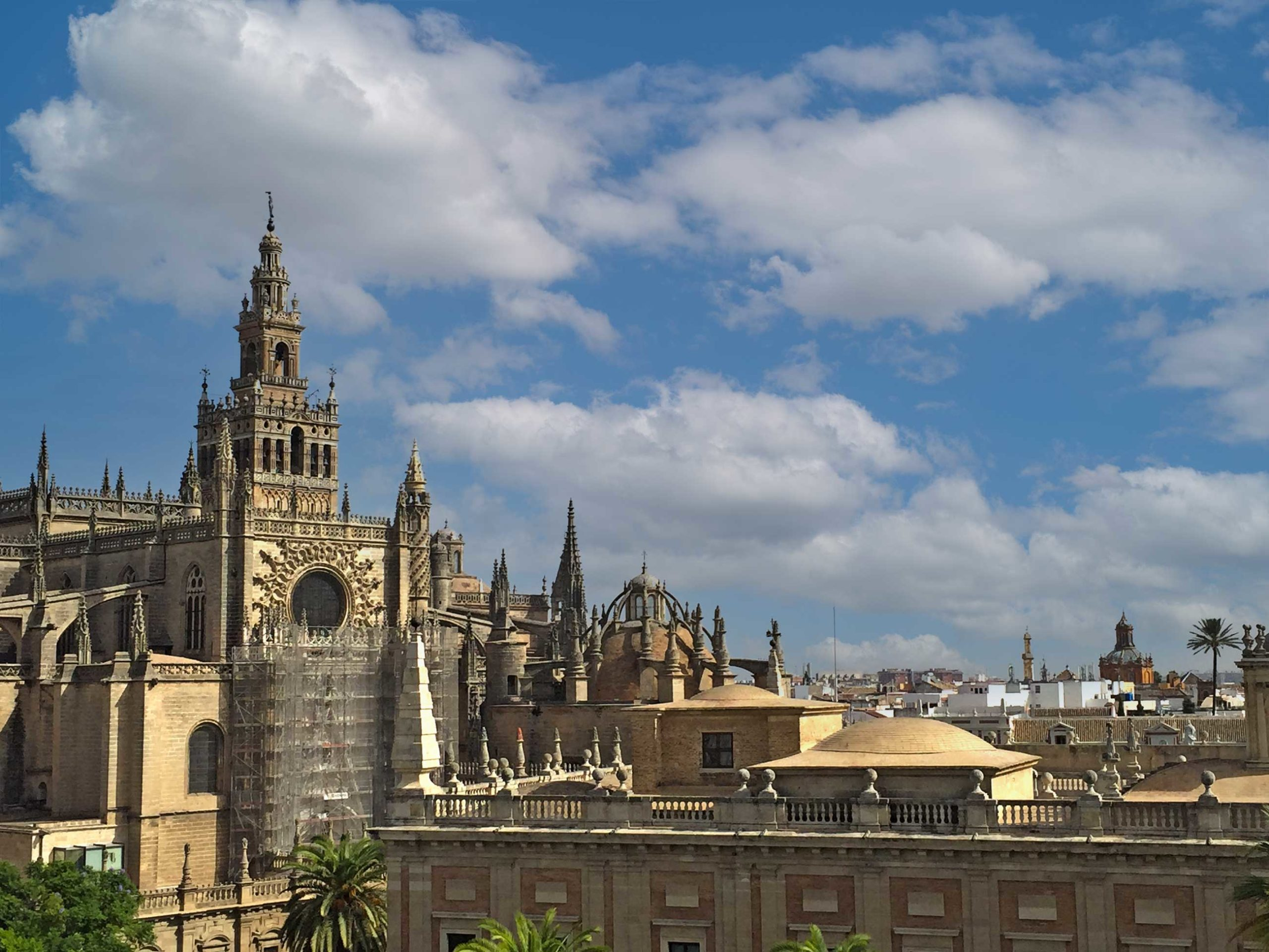 Seville Cathedral - A guided tour will provide visitors a complete Seville's Cathedral overview, by Paladar y Tomar