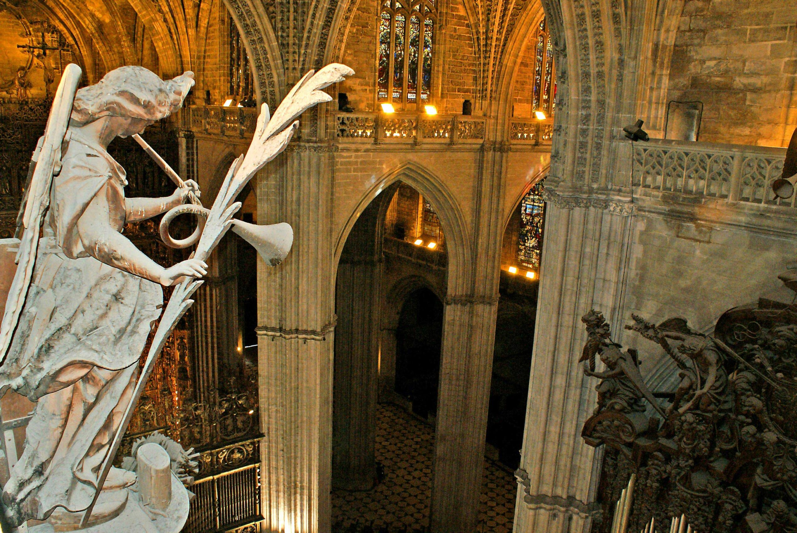 Seville Cathedral private tour from the heights, by Paladar y Tomar