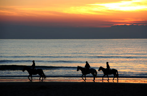 Sanlucar Horses Beach Racing 2015