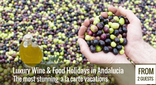 Luxury Wine and Food Holidays in Andalucia