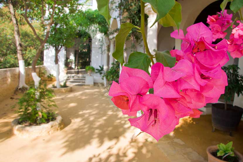 Sanlucar, a town of beautiful mansions