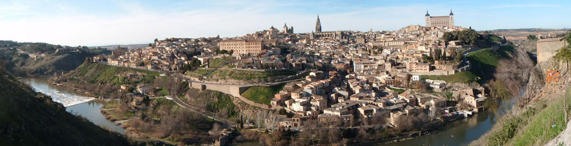 Day trip to Toledo and an Olive grove