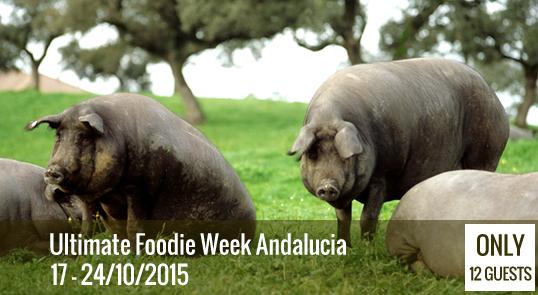 Ultimate Foodie Week Andalucia'15