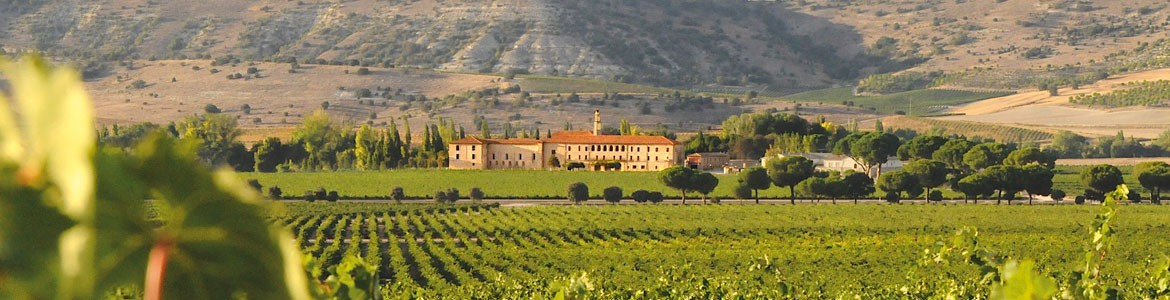 Ribera del Duero Luxury Tour
