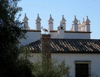 Cortijo in an Olive Grove, Arabic inspiration | Paladar y Tomar