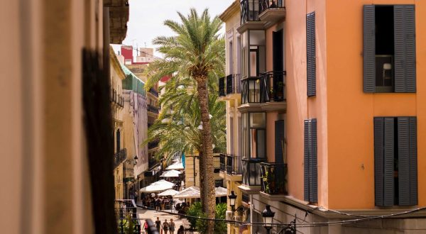 Alicante, pure Mediterranean flavors, embark on a private journey with Paladar y Tomar