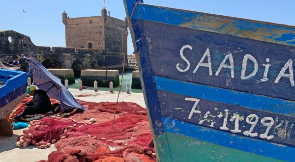 Essaouira, a fishing city in Morocco worth a day tour, Paladar y Tomar
