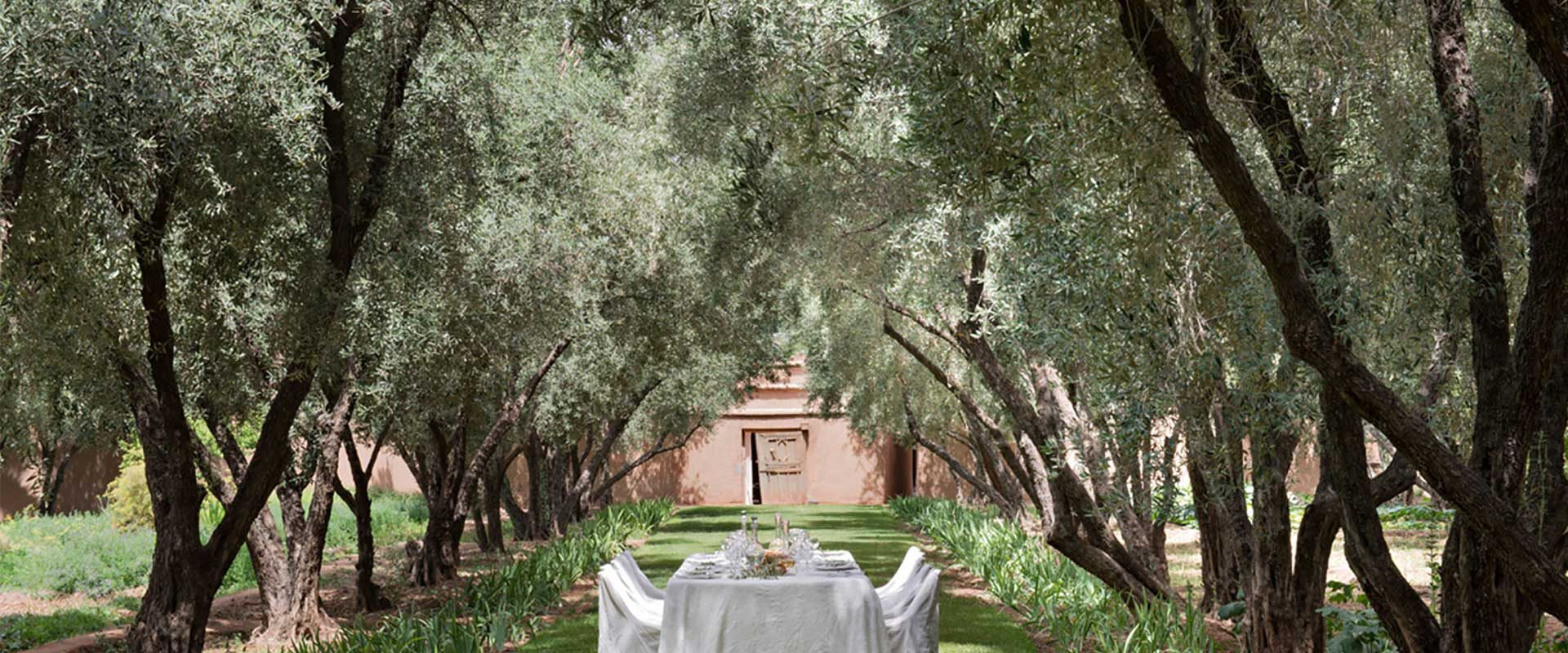 Sustainable Travel: the simplest can be the most sumptuous, Paladar y Tomar