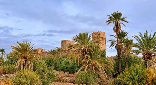 Hike in Skoura palm grove and discover all the curiosities, Cúrate Trips by Paladar y Tomar