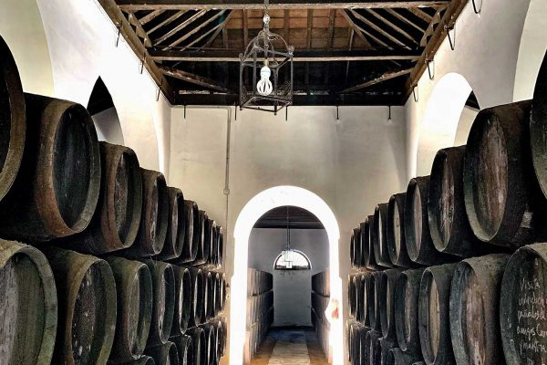 Small groups have unique access to memorable food and wine experiences with Paladar y Tomar
