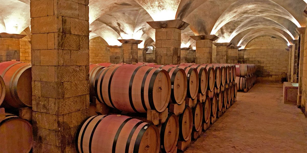 Visit a winery in Morocco, Cúrate Trips