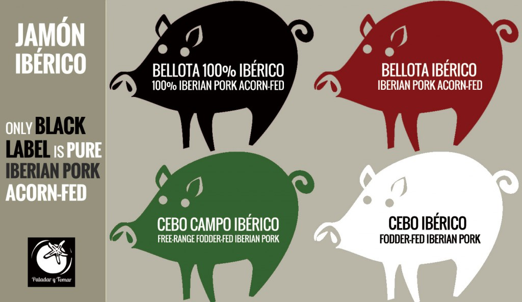 4 labels and 4 colors identify jamon iberico different qualities