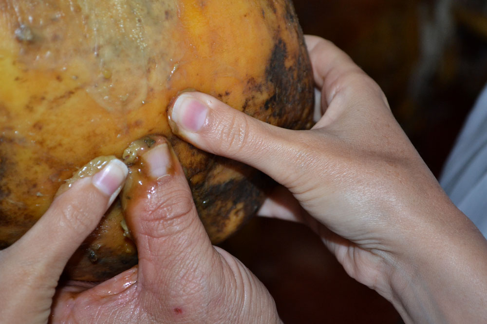 How to identify a real acorn-fed jamon iberico