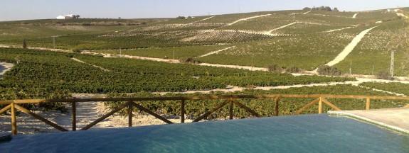 Santa Petronila, farmhouse overlooking the sherry vineyards for luxury Spanish holidays