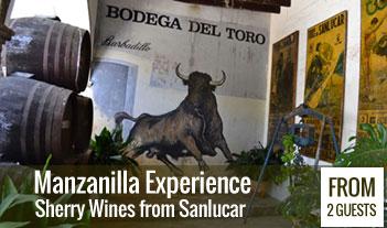 Manzanilla Experience: a sherry wine tour in Sanlucar