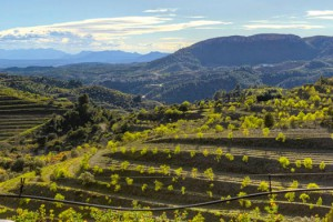 A buried villa in the vineyards of Priorat