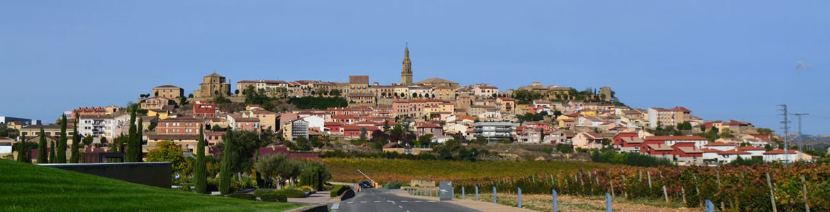 Rioja Alavesa Wine & Culture Day Trip